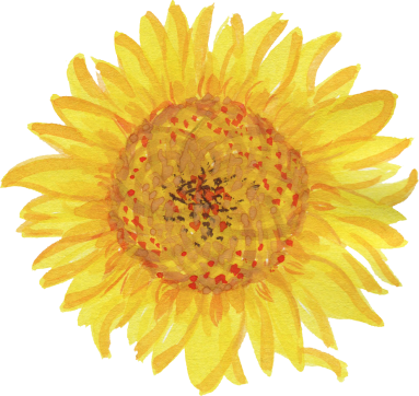 watercolor-sunflower-2.png